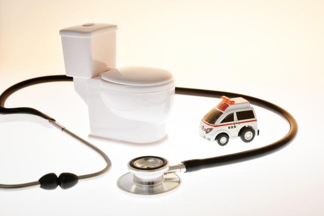 """""""トイレの模型と聴診器"""
