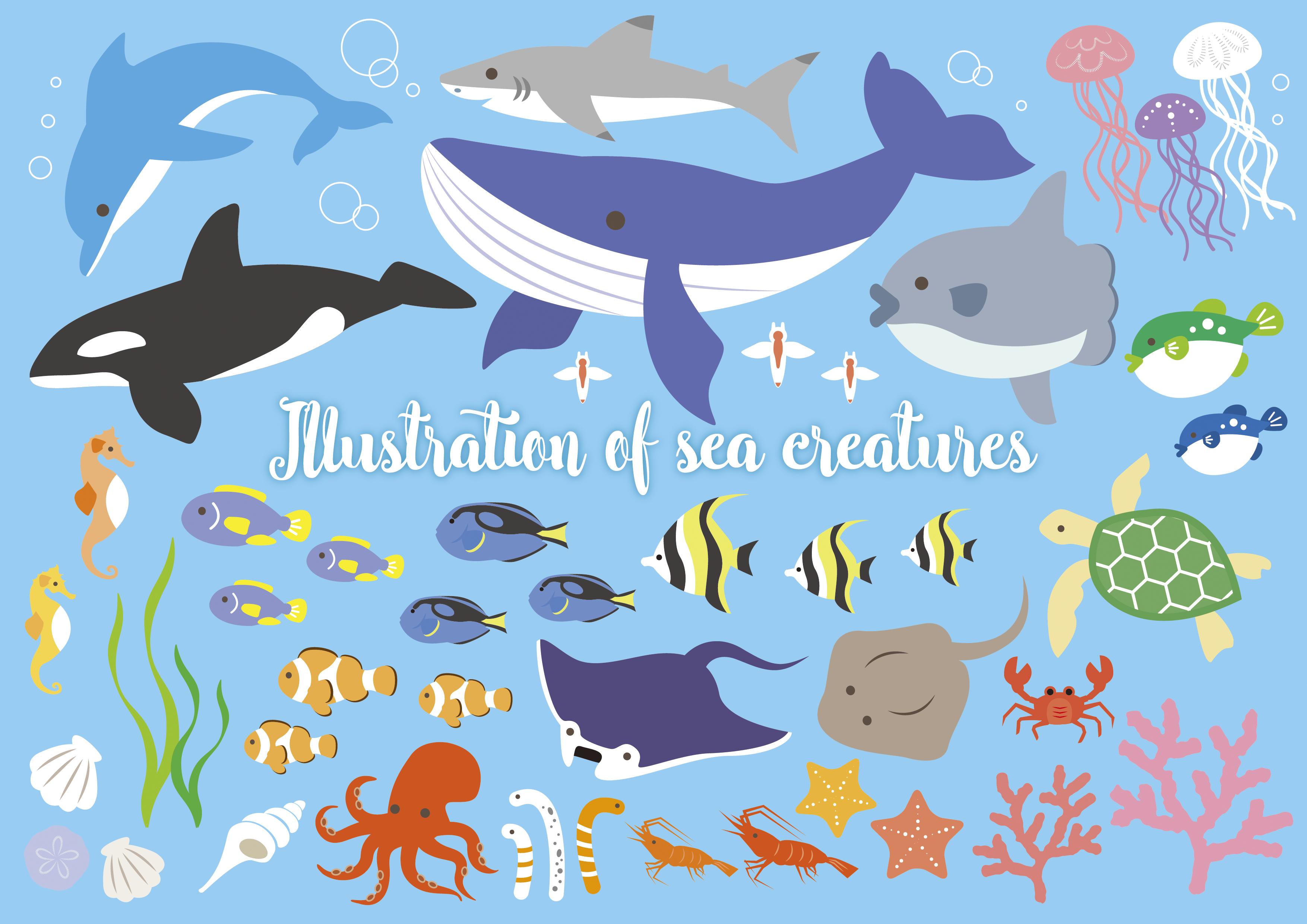 海の生き物イラスト