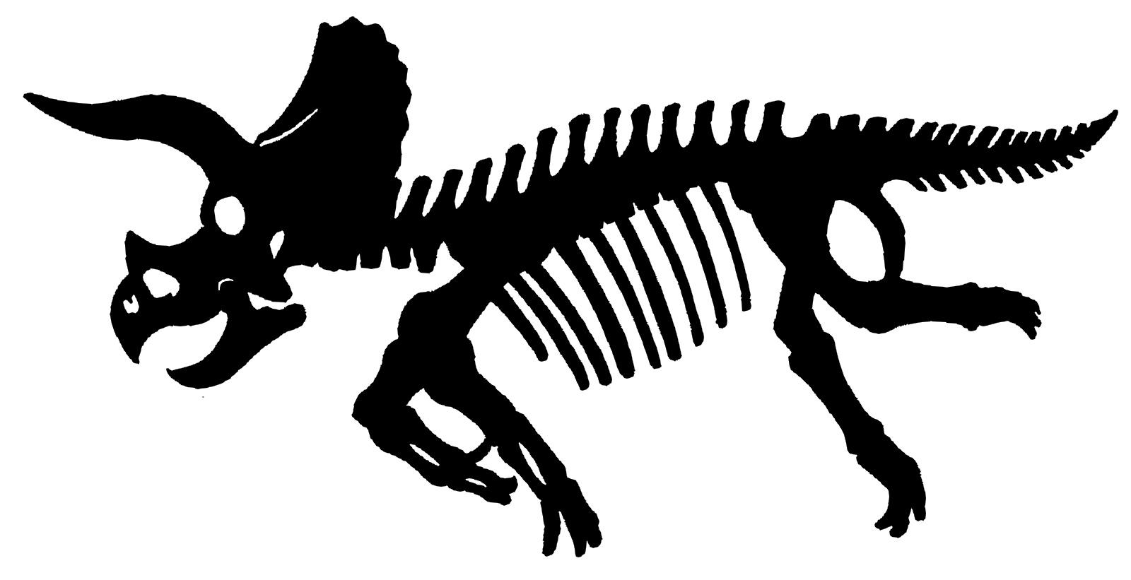 化石のシルエット