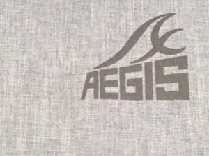 ワークマンイージスロゴ